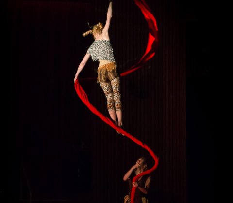 Spinning Aerial Silks/Tissue