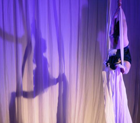 Aerial Silks/Tissue